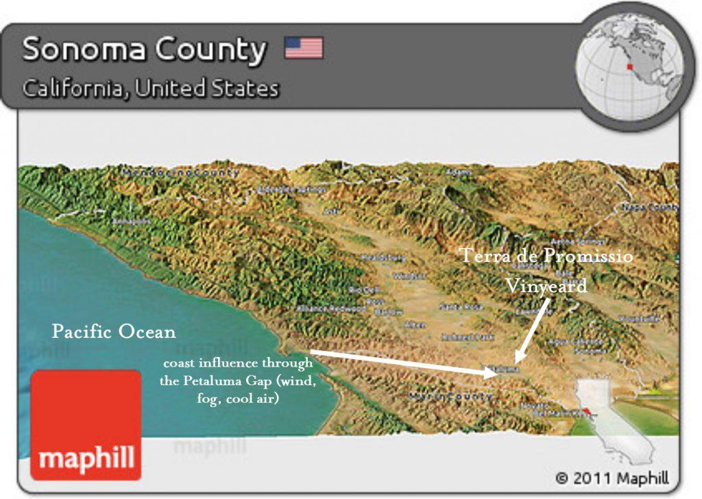 tdp petaluma gap map